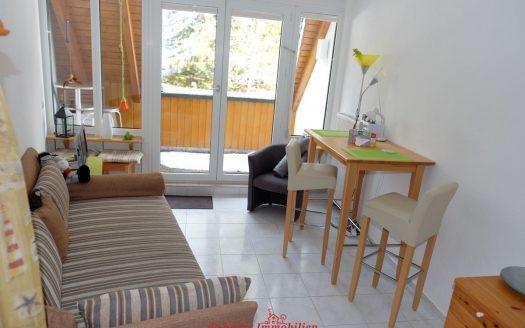 Apartement in ruhiger, idyllischer Lage. Rehe und Füchse vor der Loggia. Der Hochschwarzwald in Lenzkirch direkt vor der Haustür.  Kleine aber feine Eigentumswohnung.