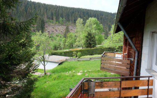Preiswerte 2-Zimmer Wohnung mitten in der Feldberger Natur im Ortsteil Neuglashütten. Hüttencharakter mit Holzdielenboden. Ideale Ferienwohnung für Wandern und Skifahren.