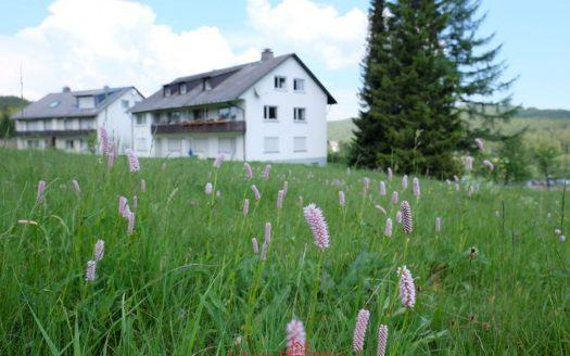2 Zimmer Eigententumswohnung in Feldberg-Altglashütten. Ferienwohnung im Ski- und Wandergebiet ohne eigenes Auto? Hier möglich. Der Bahnhof ist in Sichtweite. Dachgeschoß.